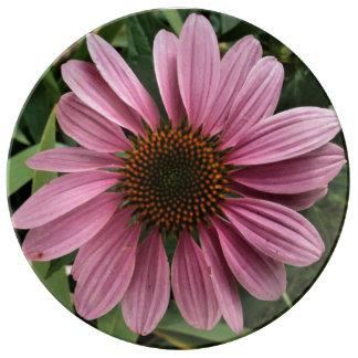 Coneflower púrpura plato de porcelana