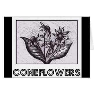 Coneflowers Tarjeta