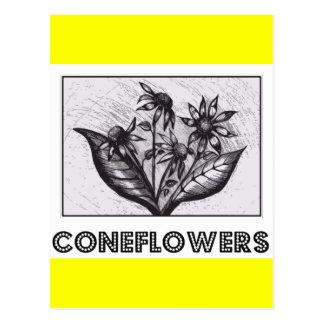 Coneflowers Tarjetas Postales