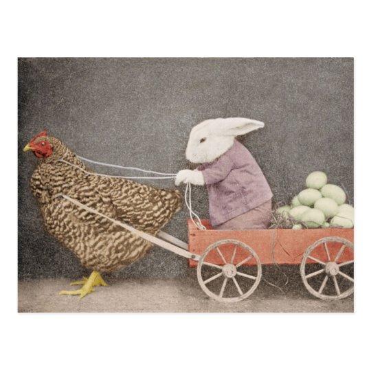 Conejito con su postal del carro del pollo