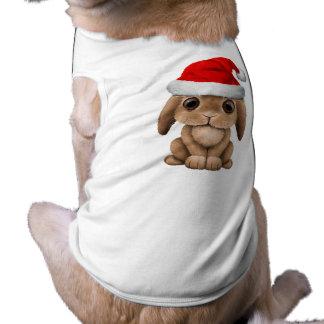Conejito del bebé que lleva un gorra de Santa