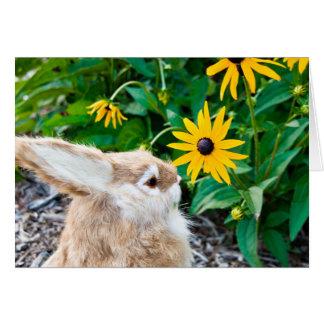 conejito en jardín tarjeta de felicitación