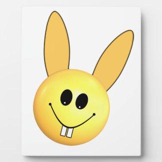 Conejito feliz sonriente para Pascua Placa Expositora