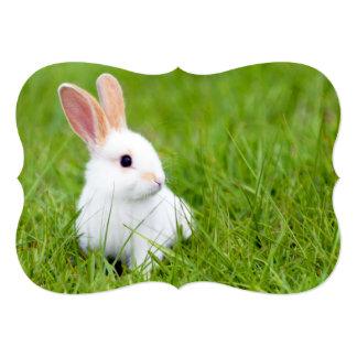Conejo blanco invitación 12,7 x 17,8 cm
