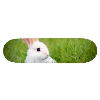 Conejo blanco patineta personalizada