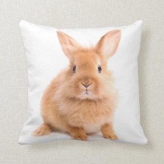 Conejo Almohadas