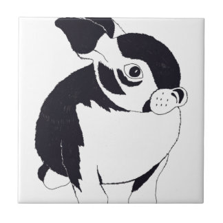 Conejo de conejito azulejo