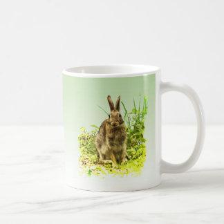 Conejo de conejito dulce de Brown en taza de la