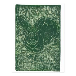 Conejo de conejito gris en la hierba postal