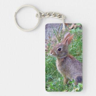 Conejo de conejito lindo del conejo de rabo blanco llavero rectangular acrílico a doble cara