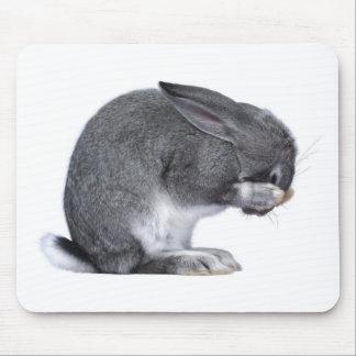 Conejo de desesperación alfombrilla de ratón