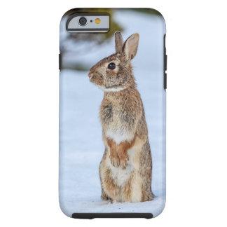 Conejo en la nieve funda resistente iPhone 6