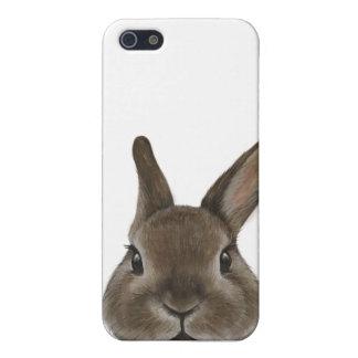 Conejo enano de Netherland por el miat iPhone 5 Fundas