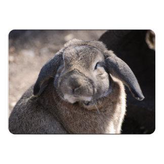 Conejo espigado del Lop Invitaciones Personales