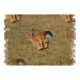 Conejo Invitación 12,7 X 17,8 Cm