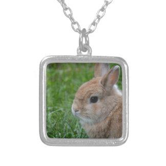 Conejo lindo colgante cuadrado