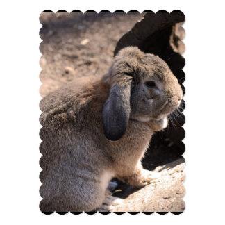 Conejo lindo invitación personalizada