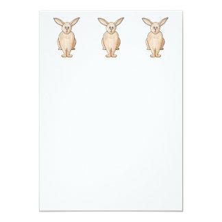 Conejo lindo comunicado