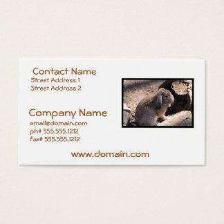 Conejo lindo tarjeta de negocios