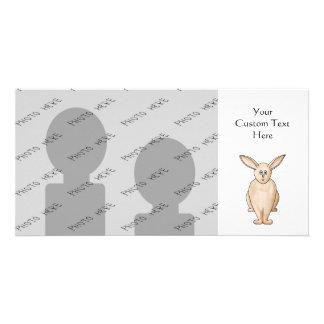 Conejo lindo tarjeta fotografica
