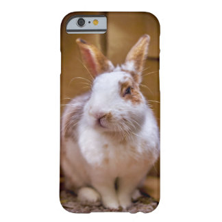 Conejo Margo de BunnyLuv Funda Barely There iPhone 6