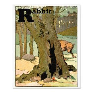 Conejo y lobo de conejito en el alfabeto del foto