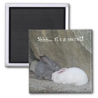Conejos de conejito lindos con decir imán de nevera