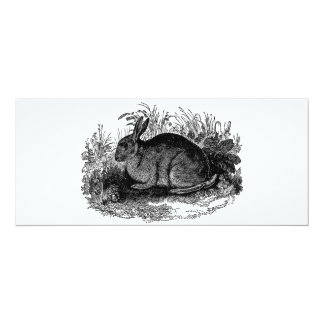 Conejos retros de la plantilla del conejito del invitación 10,1 x 23,5 cm