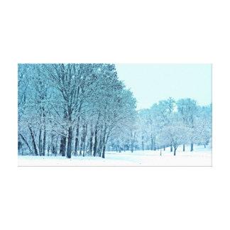 Congelado Impresión En Lienzo