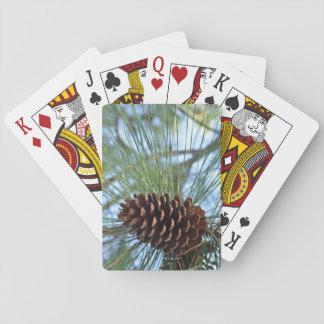 Cono del pino del árbol de pino barajas de cartas