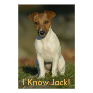 ¡Conozco Jack! Póster