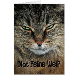 Consiga el gato bien tarjeta de felicitación