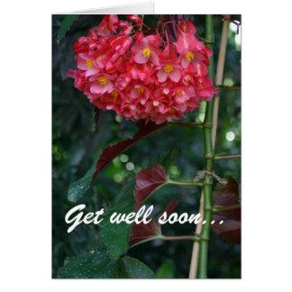 Consiga el pozo pronto y de nuevo a tarjeta floral