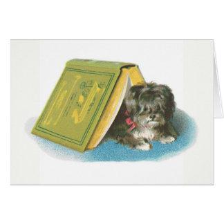 Consiga el pozo - Yorkshire Terrier lindo - Yorkie Tarjeta Pequeña