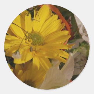 Consiga la flor pronto amarilla bien etiquetas redondas