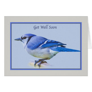 Consiga la tarjeta bien con el pájaro del arrendaj