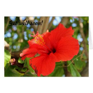Consiga pronto la tarjeta bien de la flor