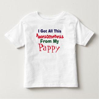 Consigo mi Awesomeness de mi camiseta de Pappy