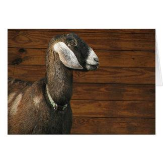Consiguió su cabra tarjeta de felicitación