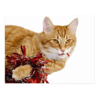 Consumición de decoraciones del navidad postal