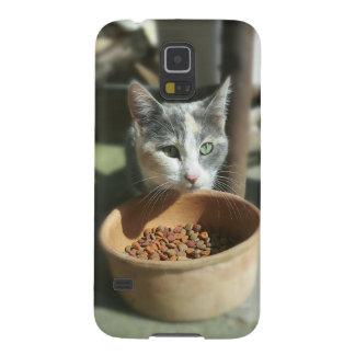 Consumición del gato funda galaxy s5