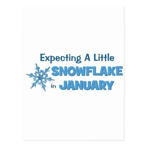 Contar con una pequeña maternidad del copo de niev tarjetas postales