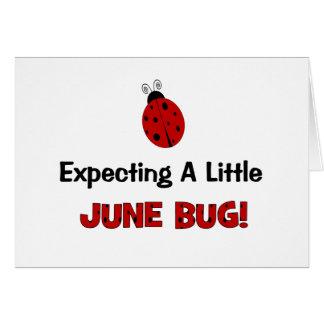 Contar con una pequeña maternidad del insecto de j tarjeta de felicitación