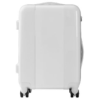 Continúe la maleta del equipaje