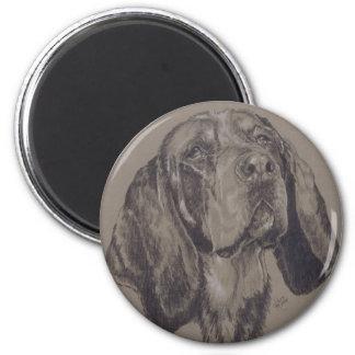 Coonhound azul de la señal imanes para frigoríficos