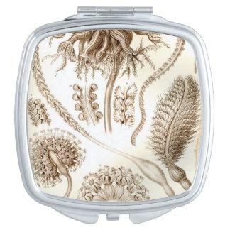 Coral de Ernst Haeckel Pennatulida Espejos Maquillaje