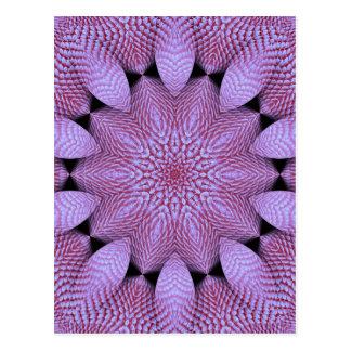 Coral violeta postal