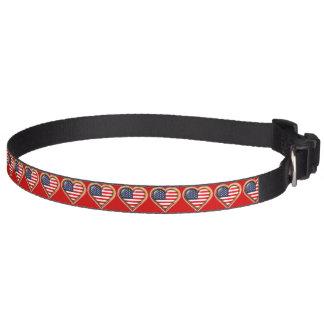 Corazón americano collar para mascotas