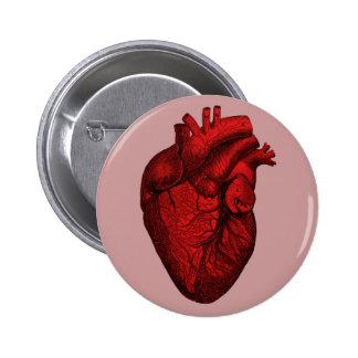 Corazón humano anatómico chapa redonda 5 cm