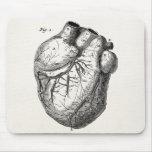 Corazones cardiacos retros de la anatomía del cora alfombrilla de raton